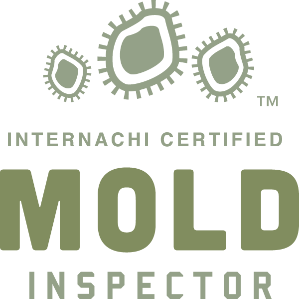 Jacksonville mold inspection near me